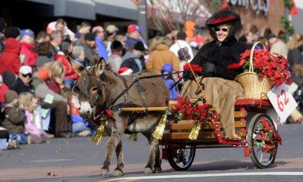 christmas_horse_parade_donkey_t4401
